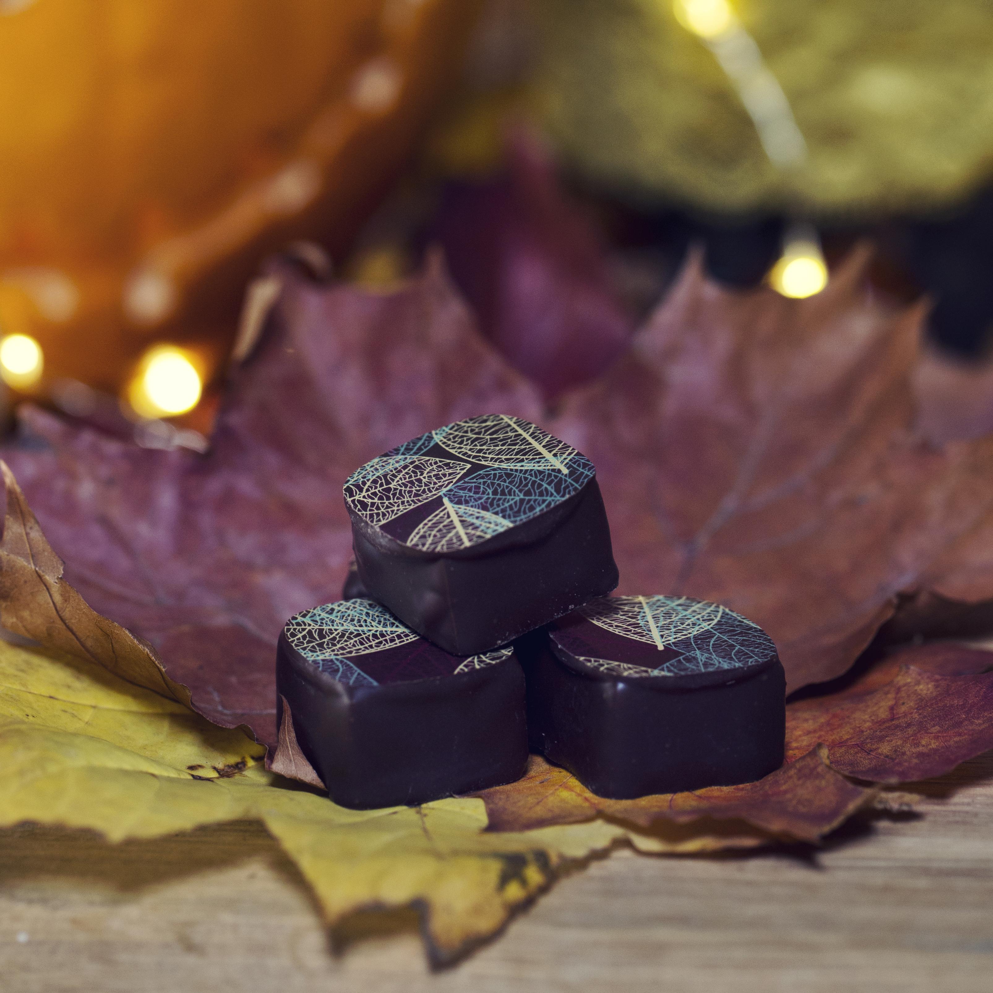 Dark Chocolate Blueberry Leaf