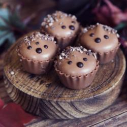 Brownie Hedgehog Cupcake