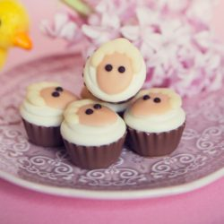 Sheep Praline Cupcake