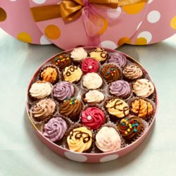 Cupcake Collection